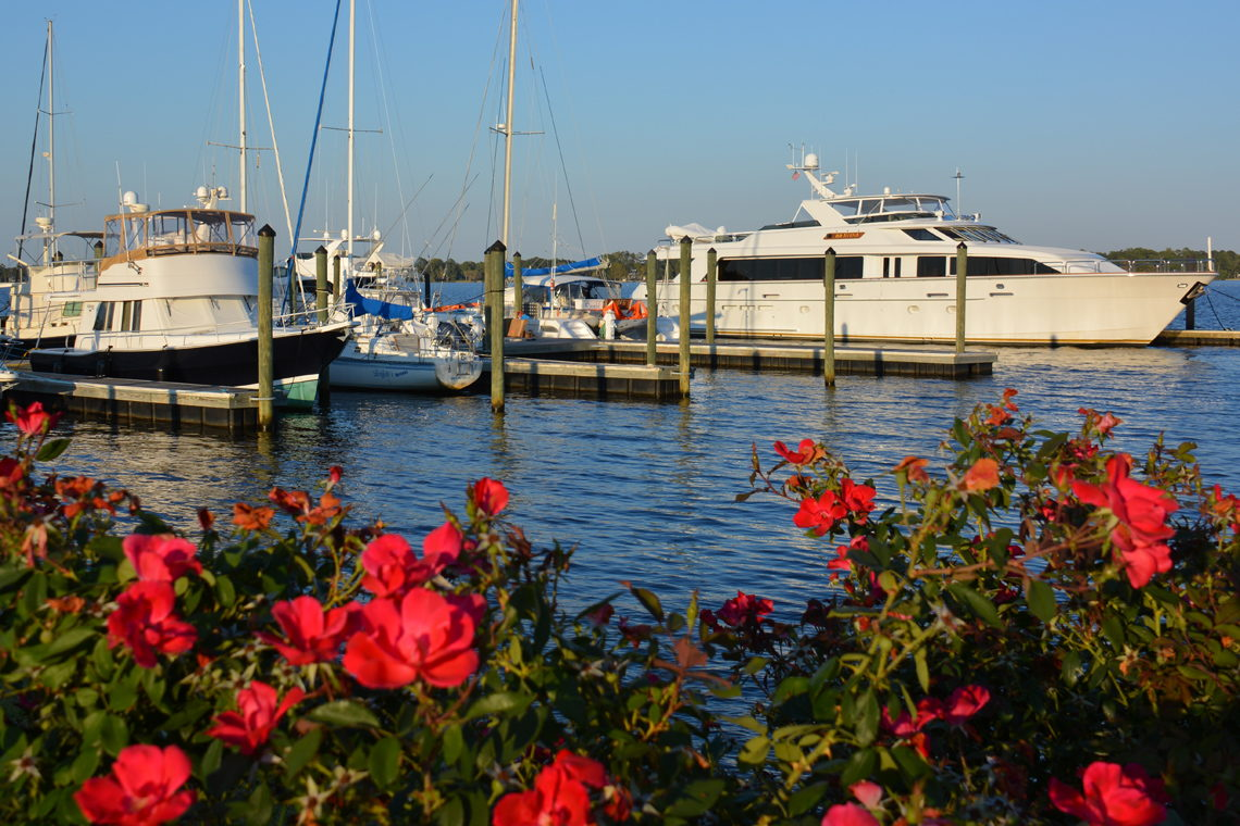 Scenic Spots in New Bern
