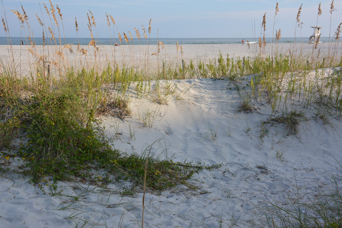 Wilmington, NC Campgrounds and RV Parks